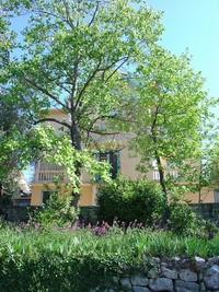 Villa Cristini