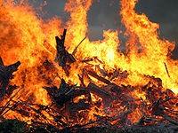 Risque sévère de feux de forêt