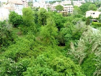 La Lubiane, une rivière vençoise