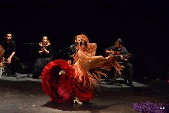 Stages de Flamenco au Centre Culturel avec Caroline Pastor & le guitariste Polchù