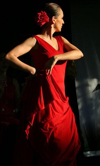 Anda Luz, une nouvelle association pour tous les amoureux du Flamenco
