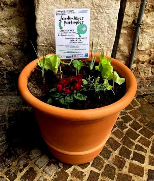 Des jardinières partagées… pour tous