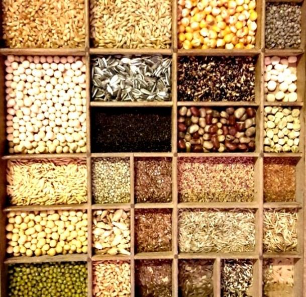 Plantez une graine…