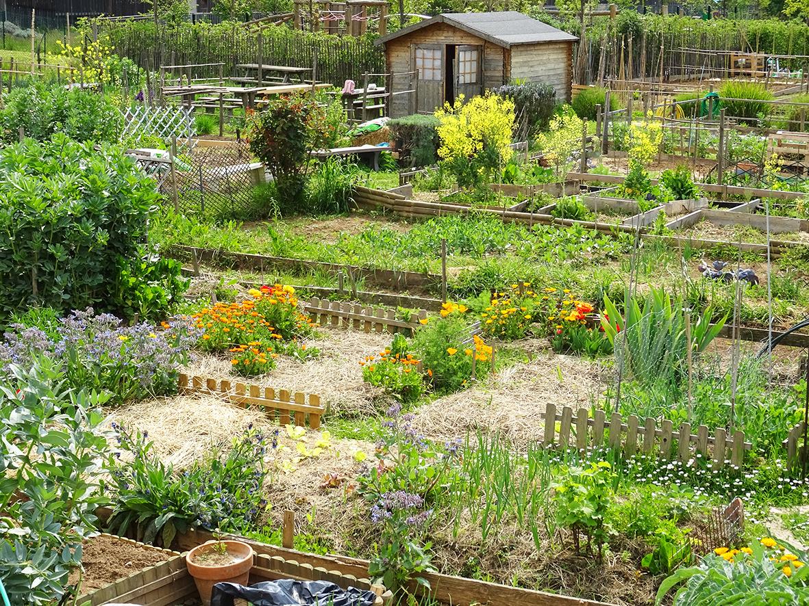 Tous au jardin… le printemps arrive  !
