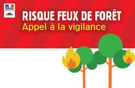 Prévention des risques incendies en forêt
